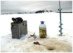 Ловля маленького живца зимой