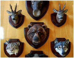 Охота и охотничьи трофеи