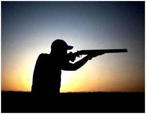 Причины промахов на охоте