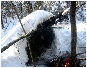 Как охотнику переночевать в лесу