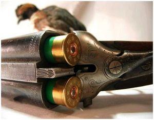 Оружие для охоты на лесную дичь