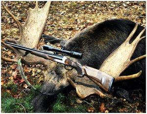 Правила использования продукции охоты на копытных животных