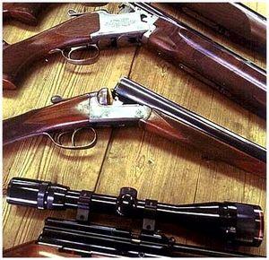 Характеристики охотничьих ружей