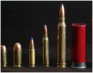 Американские патроны для охотничьих ружей