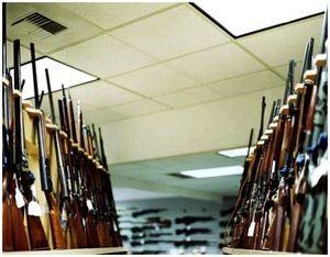 Виды охотничьих ружей