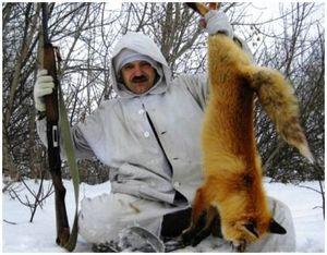 Стрельба лисиц у привады