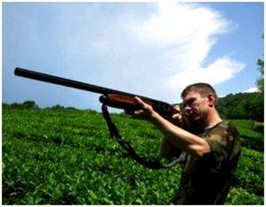 Гладкоствольные полуавтоматы для охоты