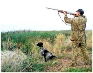 Правила охоты Российской Федерации