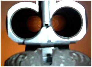 Какое ружье купить начинающему охотнику?
