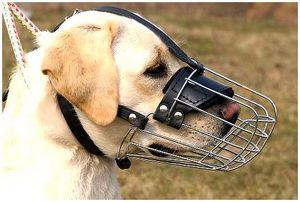Легкий намордник для собаки