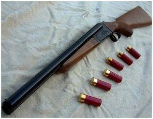 Как выбрать старое ружье?