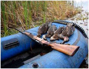 Правила поведения на охоте