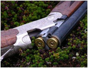 Как выбрать для охоты хорошее ружье