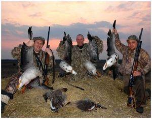 Оружейные припасы для правильной гусиной охоты