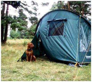 Вход палатки