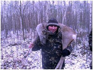Охота скрадом на косулю