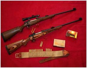 Охотничьи винтовки CZ550 на крупного зверя