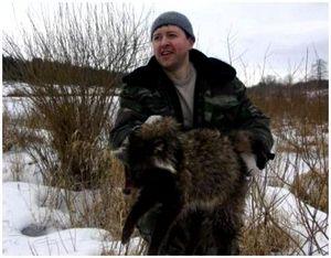 Охота на енота в Подмосковье