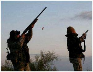 Стрельба по птице весной