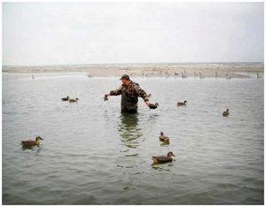 Организация засады при охоте на утку