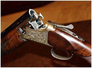 Зрительная оценка охотничьего ружья