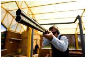 Домашние тренировки с ружьем