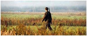 Правила, плюсы и минусы ходовой охоты