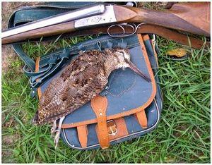 Охотничье ружье для охоты на вальтшнепа