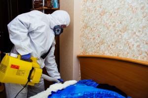 Быстрый способ уничтожения постельных клопов. Секрет эффективности от сотрудников СЭС