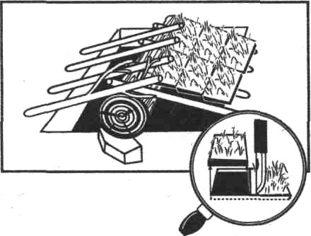enciklopedia-17.jpg