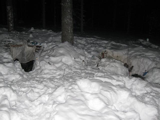 Выходные в зимнем лесу
