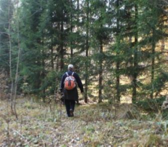 Заблудившаяся в лесу