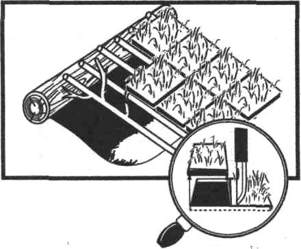 enciklopedia-16.jpg